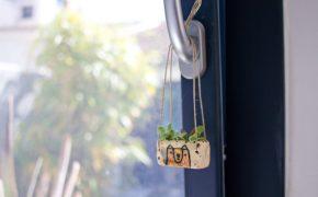 Mini pot pour succulentes