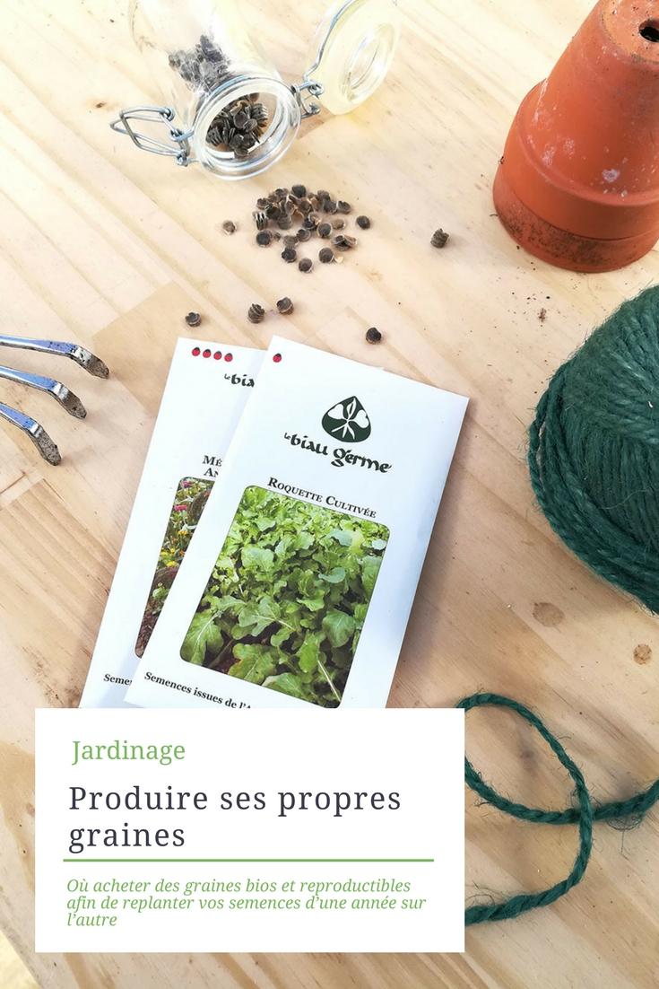 Potager naturel : acheter et produire ses propres graines